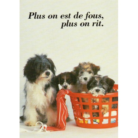 """CARTE POSTALE VIERGE COLLECTION """" animaux et humour """" N° 2030"""