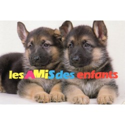 "CARTE POSTALE VIERGE COLLECTION "" NOS AMIS "" 0134"