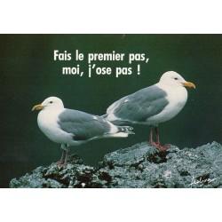 """CARTE POSTALE VIERGE HUMOUR COLLECTION """" mots en liberté"""" 02"""