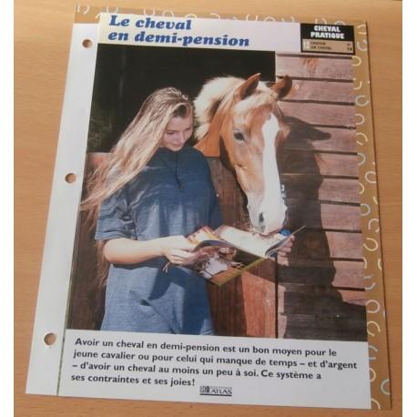 """FICHE FASCICULE """" A CHEVAL CHEVAL PRATIQUE N° 14 """" le cheval en demi pension"""