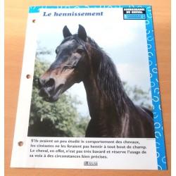 """FICHE FASCICULE """" A CHEVAL CONNAISSANCE DU CHEVAL N° 6 """" le hennissement"""