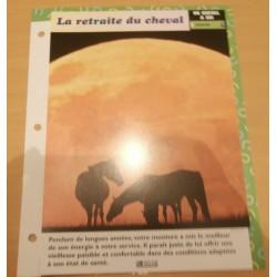 "FICHE FASCICULE "" A CHEVAL UN CHEVAL A SOI N° 30 "" la retraite du cheval"