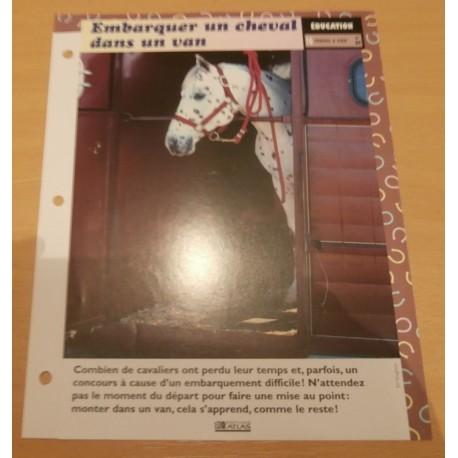 """FICHE FASCICULE """" A CHEVAL EDUCATION N° 24 """" embarquer un cheval dans un van"""
