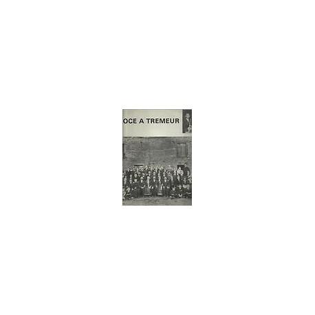 Disque Vinyle 33 tours La Noce À Tremeur Musique Et Chants De Haute-Bretagne - Elie Guichard