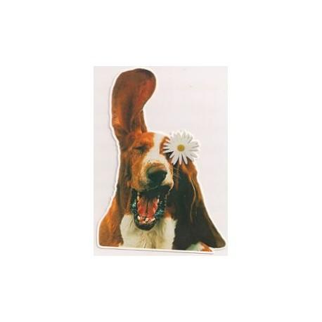 Carte postale NEUVE - humour chien