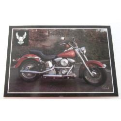 Carte Postale de Star - People - Harley Davidson moto collection