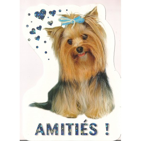 Carte postale NEUVE - Amitiès !