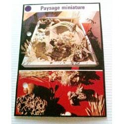 """FICHE MAISON de ELLE vintage rétro par Jacqueline Chaumont """" paysage miniature"""" collection occasion"""