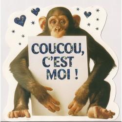 Carte postale - Coucou c'est moi - singe Anniversaire fête NEUVE