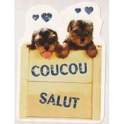 Carte postale - Coucou Salut - chiots Anniversaire fête NEUVE