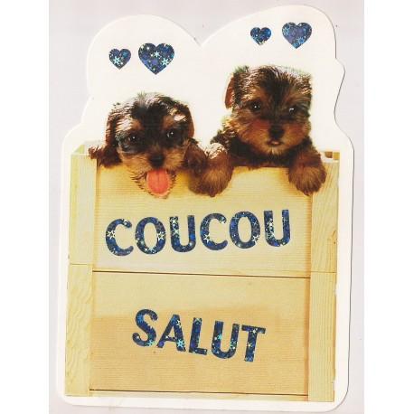 Carte postale NEUVE - Coucou Salut - chiots