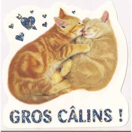 Carte postale NEUVE - Gros calins - chats