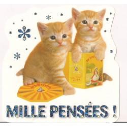Carte postale - mille pensées - chatons Anniversaire fête en tout genre neuve