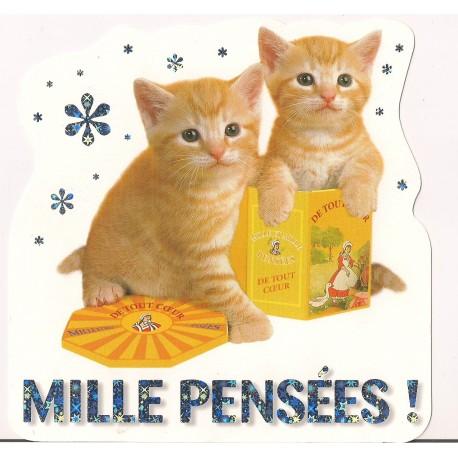 Carte postale NEUVE - milles pensées - chatons