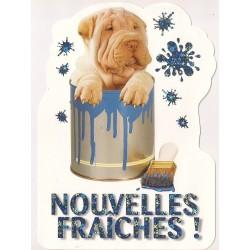 Carte postale - nouvelles fraiches - chien anniversaire fête en tout genre neuve