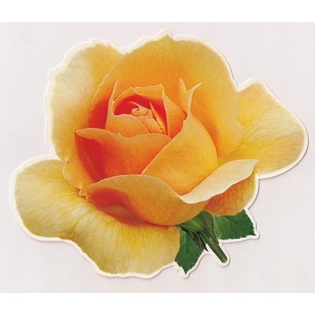 Carte postale NEUVE - rose jaune