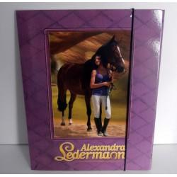 Chemise Pochette cartonnée à rabat souple enfant ados ALEXANDRA LEDERMANN 02 A4 Fourniture scolaire neuf