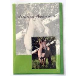 Carte postale neuve avec enveloppe joyeux anniversaire ( lot 26.04)