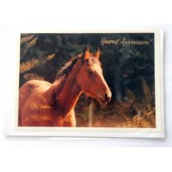 Carte postale neuve avec enveloppe joyeux anniversaire (26.05)
