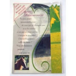 Carte postale neuve avec enveloppe joyeux anniversaire (27.06)