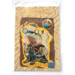Carte postale neuve avec enveloppe joyeux anniversaire (28.02)