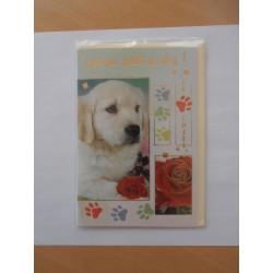 Carte postale neuve avec enveloppe joyeux anniversaire chiot (49.02)