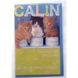 Carte postale neuve avec enveloppe joyeux anniversaire chaton ( 49.07)