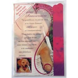 Carte postale neuve avec enveloppe joyeux anniversaire avec marque pages intégré (49.08)