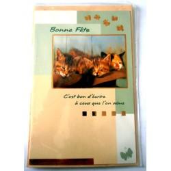 Carte postale neuve avec enveloppe bonne fête chaton (15.02)