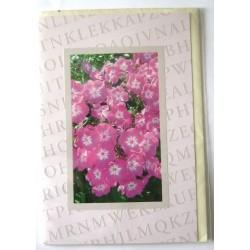 Carte postale neuve avec enveloppe sentiments amoureux saint valentin floral (lot 11.04)