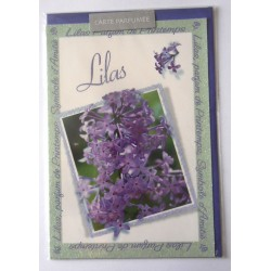 Carte postale neuve avec enveloppe fête anniversaire parfumé floral LILAS (lot 15.02)