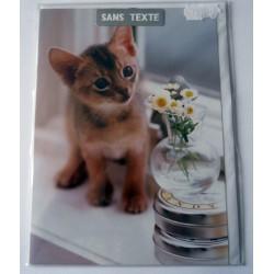 Carte postale neuve avec enveloppe fête anniversaire SANS TEXTE CHAT (lot 16.03)