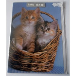 Carte postale neuve avec enveloppe fête anniversaire SANS TEXTE CHAT (lot 17.02)