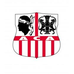 TRANSFERT TEXTILE VETEMENT SUPPORTER FOOTBALL FRANCE LOGO CLUB OLYMPIQUE AJACCIO NEUF