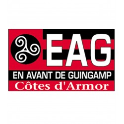 TRANSFERT TEXTILE VETEMENT SUPPORTER FOOTBALL FRANCE LOGO CLUB OLYMPIQUE GUINGAMP EAG NEUF