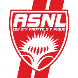 TRANSFERT TEXTILE VETEMENT SUPPORTER FOOTBALL FRANCE LOGO CLUB OLYMPIQUE ASNL NANCY NEUF