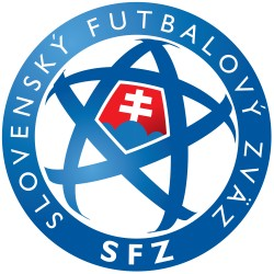 TRANSFERT TEXTILE VETEMENT SUPPORTER FOOTBALL LOGO CLUB SLOVAKIA NEUF