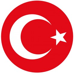 TRANSFERT TEXTILE VETEMENT SUPPORTER FOOTBALL LOGO CLUB TURQUIE
