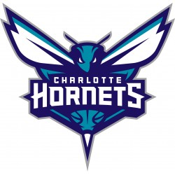 TRANSFERT TEXTILE VETEMENT SUPPORTER NBA LOGO CHARLOTTE HORNETS