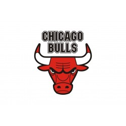 TRANSFERT TEXTILE VETEMENT SUPPORTER NBA LOGO CHICAGO BULLS