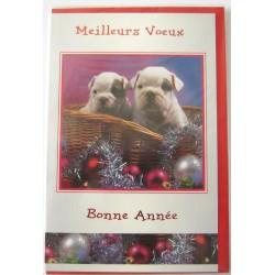 Carte postale neuve + enveloppe meilleurs voeux bonne année (38.07)