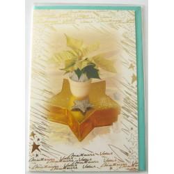 Carte postale neuve + enveloppe meilleurs voeux bonne année (lot 48.02)