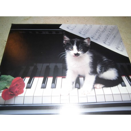 POSTER DECORATIF (35x28cm) Chaton sur piano