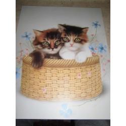 POSTER DECORATIF (35x28cm) 2 chatons dans un panier NEUF