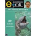 DVD E M6 - Des Animaux Étonnants !