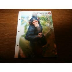 """FICHE FASCICULE """"a la découverte du monde sauvage"""" le chimpanzé 6 collection occasion"""