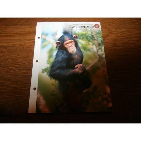 """FICHE FASCICULE """"a la découverte du monde sauvage"""" le chimpanzé"""