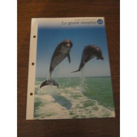 """FICHE FASCICULE """"a la découverte du monde sauvage"""" le grand dauphin"""