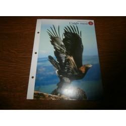 """FICHE FASCICULE """"a la découverte du monde sauvage"""" l'aigle,sauvage 2 collection occasion"""