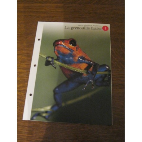 """FICHE FASCICULE """"a la découverte du monde sauvage"""" la grenouille fraise"""